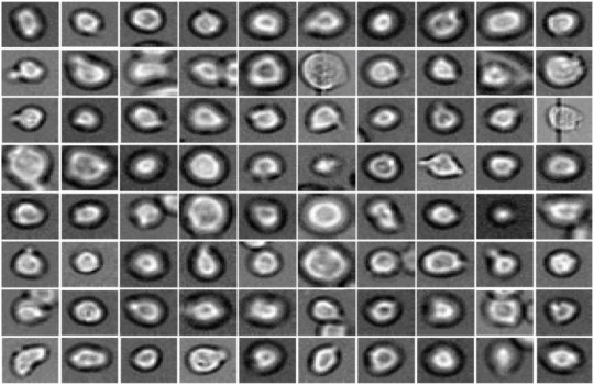 Deep Learning predicts hematopoietic stem cell development