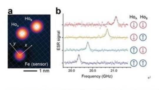 Single atom memory: The world
