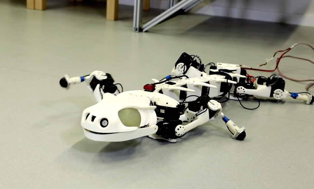 Video Friday: Volleyball Robots, Bioinspired Design, and Deep Robotic Learning