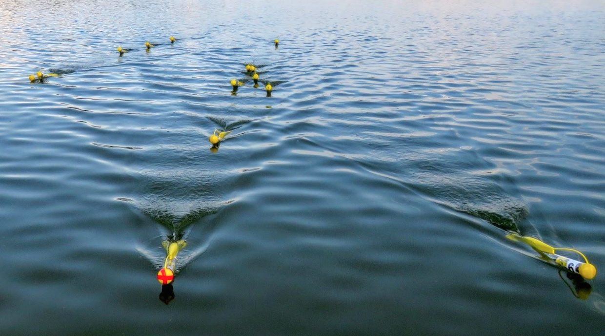Video Friday: Water Drones, Sad Robot, and Self-Driving in Duckie Town