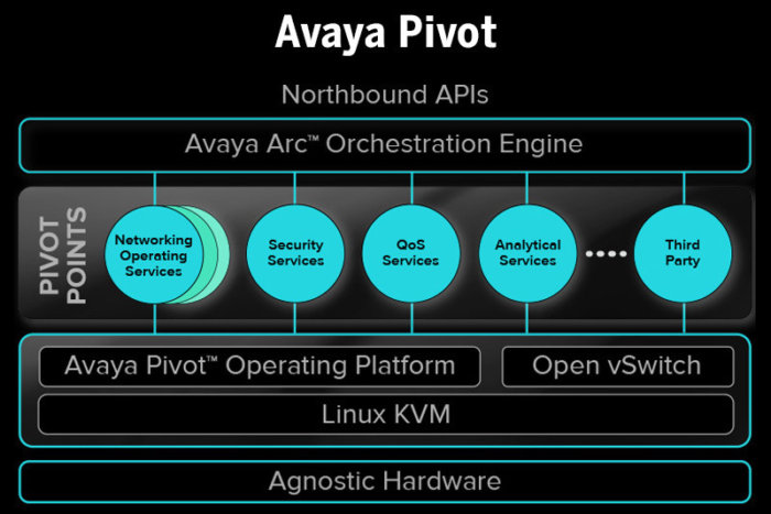 Avaya plan deploys network virtualization, segmentation to guard business jewels