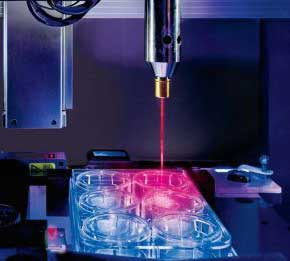 3D-bioprinted veins reveal new drug diffusion details