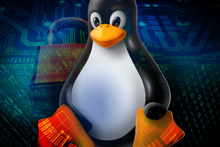 What is Linux? A powerful component of modern data centers